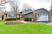 Home for sale: 607 Gaslight Dr., Algonquin, IL 60102