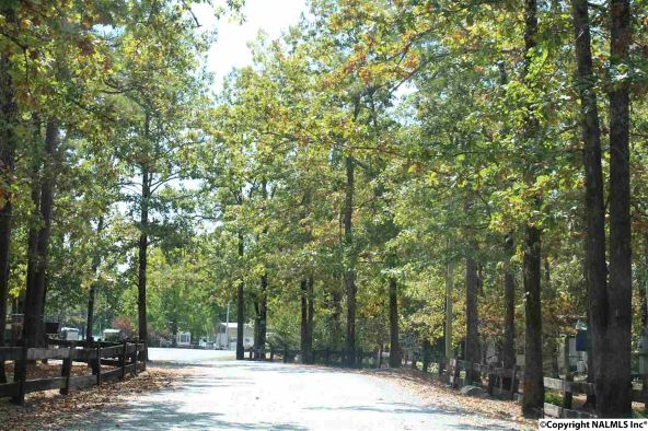 31 County Rd. 131, Cedar Bluff, AL 35959 Photo 24