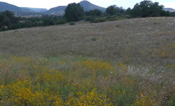 290 N. Navajo Trail, Young, AZ 85554 Photo 2