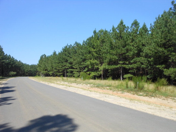 3495 Preserve Ct., Sumter, SC 29150 Photo 12