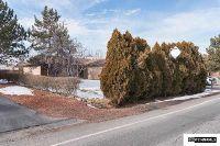 Home for sale: 6510 David James Blvd., Sparks, NV 89441