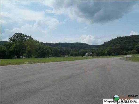 3 Carlton Rd., Scottsboro, AL 35769 Photo 8