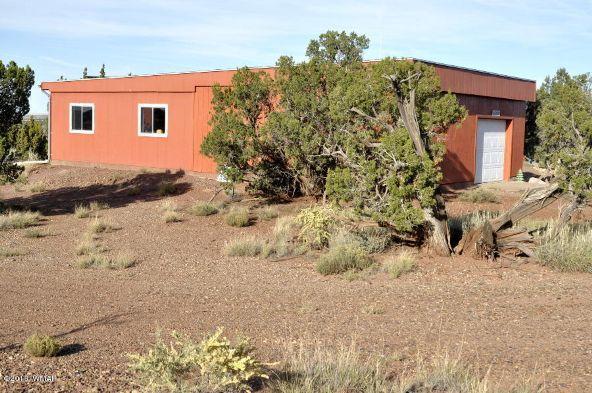129 N. County Rd. 9190, Concho, AZ 85924 Photo 54