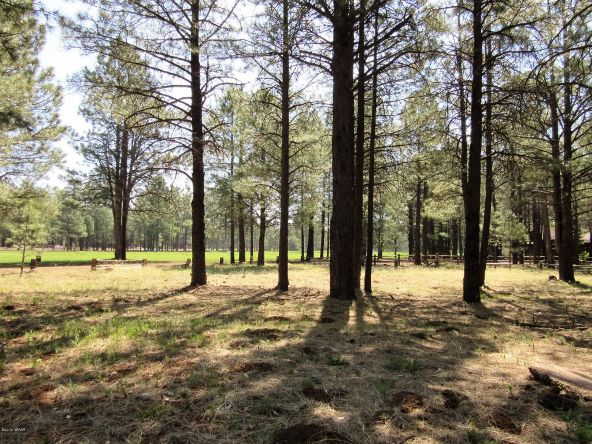 4621 Buck Springs Rd., Pinetop, AZ 85935 Photo 7