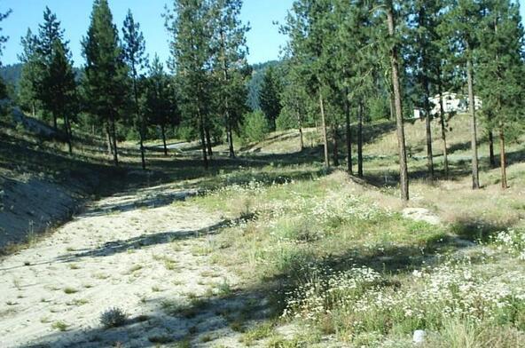 1269 Ruffed Grouse Way, Kettle Falls, WA 99141 Photo 22