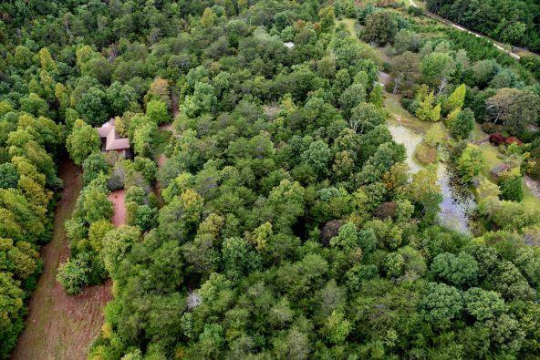 70 County 944 Rd., Mentone, AL 35984 Photo 6