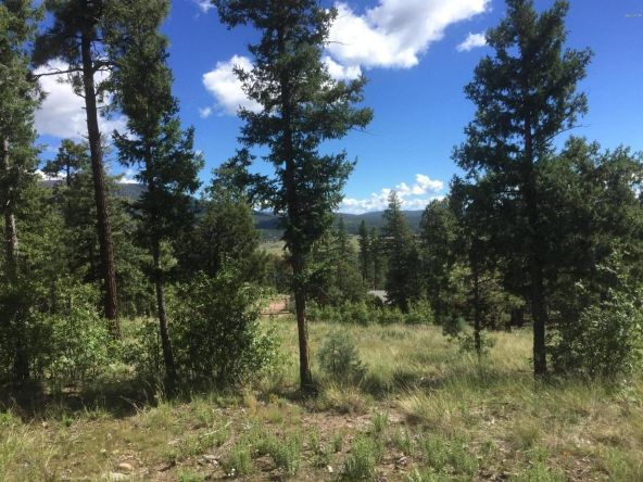 22 Cr 2074, Alpine, AZ 85920 Photo 17