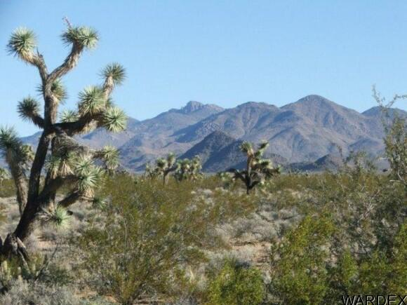 3529-B Arroyo Rd., Yucca, AZ 86438 Photo 16