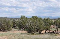 Home for sale: 3845 Petersen Rd., Snowflake, AZ 85937