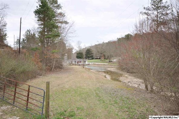 195 County Rd. 728, Cedar Bluff, AL 35959 Photo 37