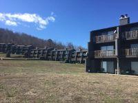 Home for sale: 220 White Oak Mountain Rd., Columbus, NC 28722
