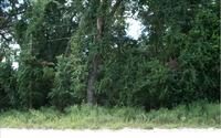 Home for sale: S.W. Dallas Terrace, Fort White, FL 32038