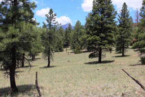 3252 N. Chickadee Trail, Flagstaff, AZ 86001 Photo 6