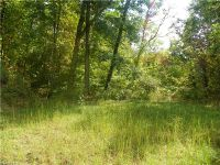 Home for sale: Lot 135 High Bluff Dr., Weaverville, NC 28787
