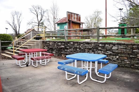 3173 E. Van Buren, Eureka Springs, AR 72632 Photo 20