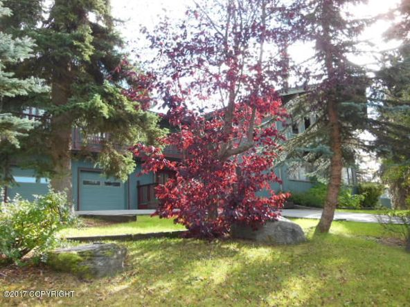 11995 Wilderness Dr., Anchorage, AK 99516 Photo 2
