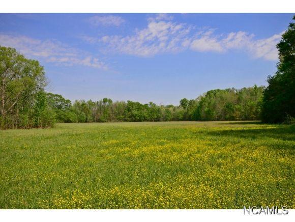 357 West Lacon Rd., Falkville, AL 35622 Photo 15