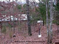 Home for sale: 1033 Cr 137, Henderson, AR 72544