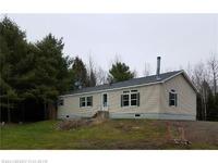 Home for sale: 160 Bos Ln., Greenbush, ME 04418