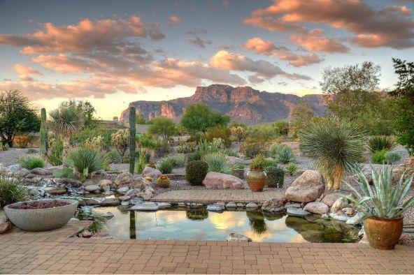 6330 E. Flat Iron Loop, Gold Canyon, AZ 85118 Photo 29