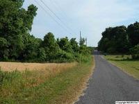 Home for sale: Williams Rd., Guntersville, AL 35976