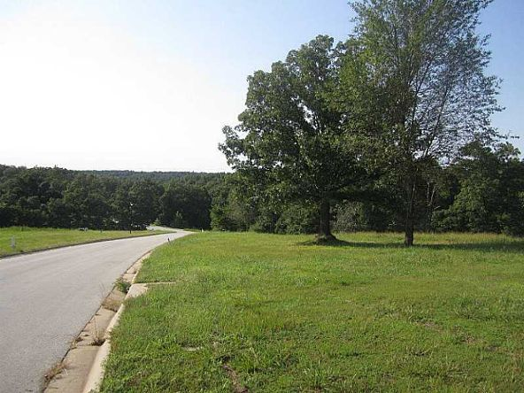 4087 Dogwood Canyon Loop N., Fayetteville, AR 72704 Photo 3