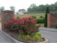 Home for sale: Lot 25 Villa Ct., Greeneville, TN 37745