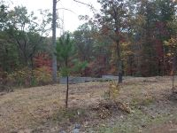 Home for sale: Lot 45 East Ridge Dr., Nebo, NC 28761