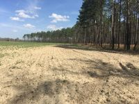 Home for sale: 0000 Baggett Mill Rd. (95 Acres), Cairo, GA 39828