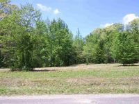 Home for sale: Sharp Rd., Lexington, TN 38351