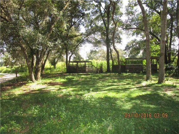 20941 Sunridge Rd., Groveland, FL 34736 Photo 10