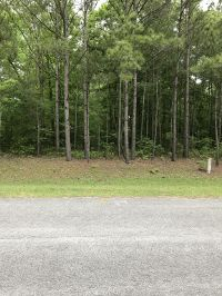 Home for sale: Lot 19 Paul Dr., Trenton, NC 28585