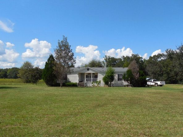 1790 St. Mary Rd., Cottonwood, AL 36320 Photo 5