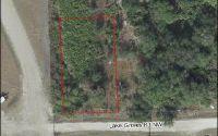 Home for sale: 1621 Lake Groves Rd., Lake Placid, FL 33852