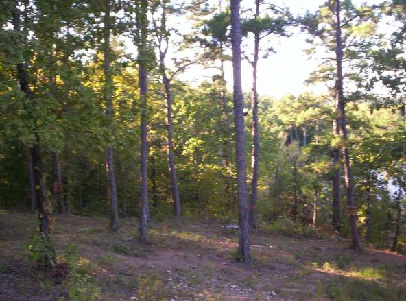 201-200 Lake Forest Shores, Hot Springs, AR 71913 Photo 11