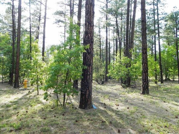 4741 Mountain Gate Cir., Lakeside, AZ 85929 Photo 5