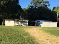 Home for sale: 837 Crooked Creek Rd., Brilliant, AL 35548