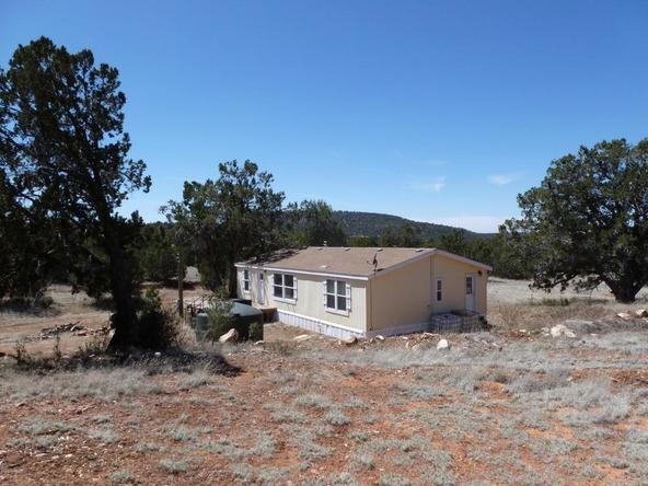 42100 N. Dead Tree Rd., Seligman, AZ 86337 Photo 15