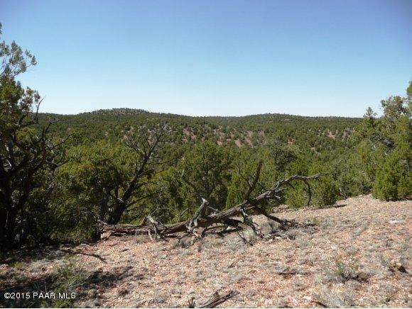 1024 Sierra Verde Ranch, Seligman, AZ 86337 Photo 9