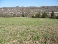 Home for sale: 8 Cherokee Ct., Woodbury, TN 37190