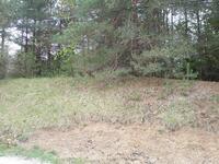 Home for sale: 0 Munger Rd., Ypsilanti, MI 48197