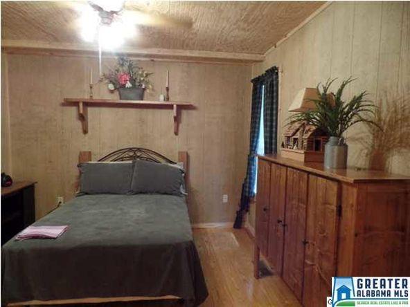 72 Co Rd. 219, Piedmont, AL 36272 Photo 63