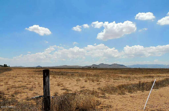 800 Ac Off Kansas Settlement, Willcox, AZ 85643 Photo 16