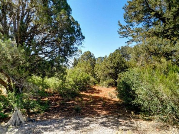 215 Gunsmoke, Sedona, AZ 86336 Photo 5