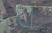 Home for sale: Route 74 Box 1737, Alton, MO 65606