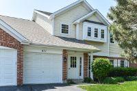 Home for sale: 871 Nelli Ct., Naperville, IL 60563