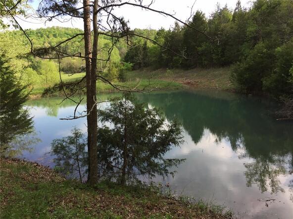 2496 County Rd. 317, Eureka Springs, AR 72632 Photo 24