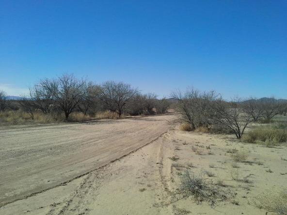12802 Green Cactus, Tucson, AZ 85735 Photo 3