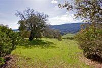 Home for sale: Silverado Trail, Calistoga, CA 94515