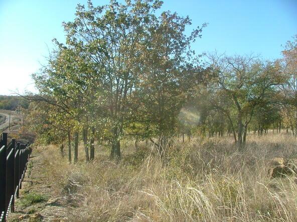 L 285 Cozy Cove, Chico, TX 76431 Photo 12